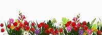 Фартук Цветы