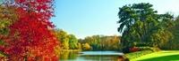 Фартук Осенний пейзаж